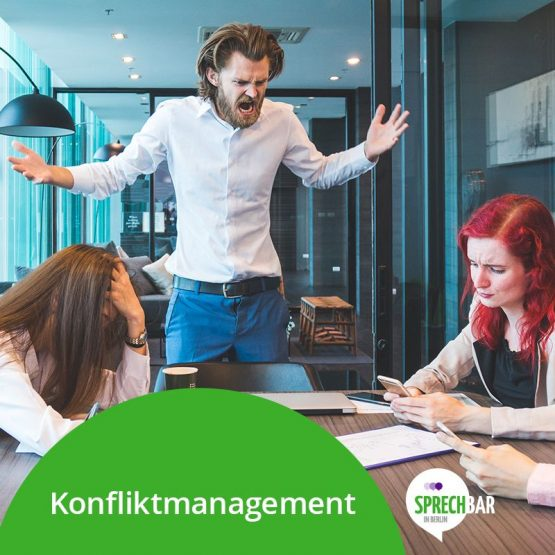 Seminar Konfliktmanagement
